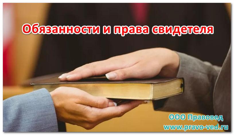 права и обязанности свидетеля